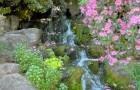 Рододендроновый сад Кристал Спрингз