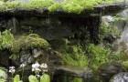 Сад Иннисфри