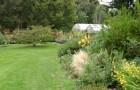 Сад Спиннерс
