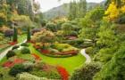 Сад Университета Британской Колумбии