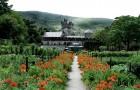 Сад замка Гленвиг