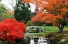 Сады Блайзуолд