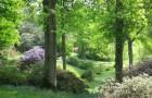 Сады Хай Биче