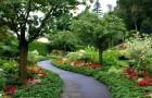 Сады Минтеров