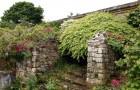 Замок и сады в Хивере