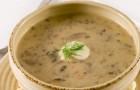 Грибной суп с орехами в скороварке