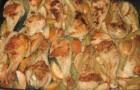 Курица с яблоками и овощами в скороварке
