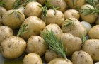Молодой картофель с розмарином в пароварке