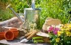 Крупные компании тоже начинают заниматься садоводством