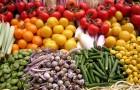 Простые овощи, вдохновившие скульптора
