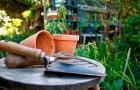 Расцвет нового поколения садоводов
