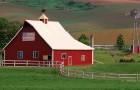 Зачем врачи покупают ферму? Чтобы лечиться