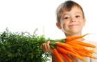 Морковь и брокколи на страже детского здоровья