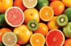 Как испорченные фрукты способствовали эволюции людей