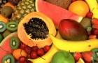 Почему стоит выбирать целые фрукты и избегать соков