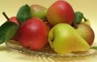 Зимние овощи, фрукты и не только