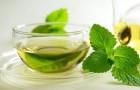10 вкусных травяных чаев для исцеления тела и разума