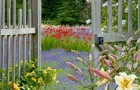 Ваш сад питается углеродом – так кормите его хорошенько!